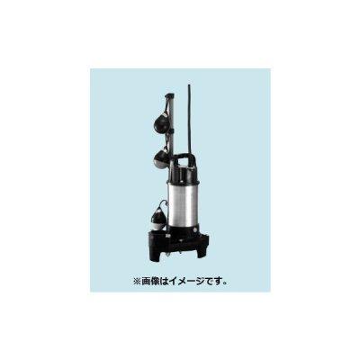 画像1: 排水水中ポンプ テラル 40PVT-5.15S 50Hz 樹脂製 汚水・雑排水用 自動交互並列運転 [■]